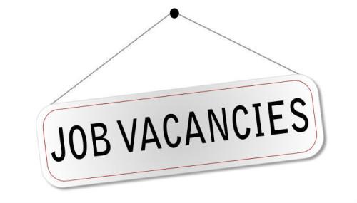 Job-vacancy1