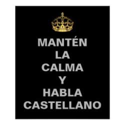 funny_spanish_keep_calm_poster-rc53d82b8629b43bfa51f96b1dfd64705_wvy_8byvr_324